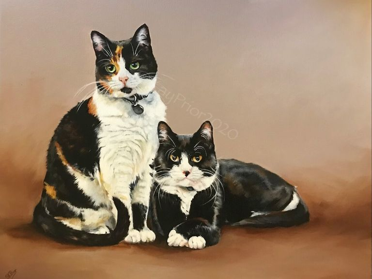 Portrait of two DSH cats by Kay Prior