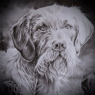Graphite pencil pet portraits